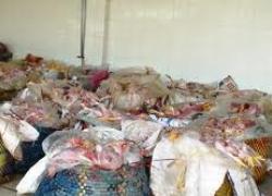 Phát hiện gần 1,7 tấn gà thối