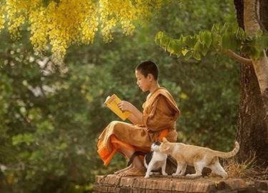17 câu nói đáng giá ngàn vàng giúp bạn bình an, tự tại, thấu tận tâm can