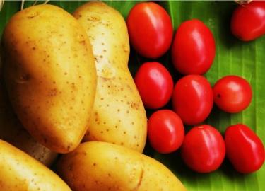 Những thực phẩm kết hợp với cà chua dễ biến thành 'độc dược'