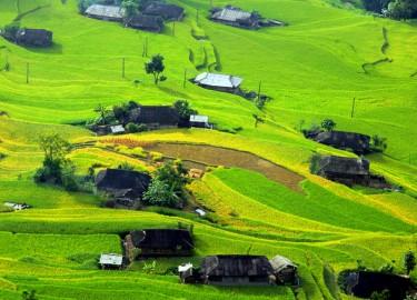 Qua đèo vượt dốc đến Bản Phùng ngắm lúa thu