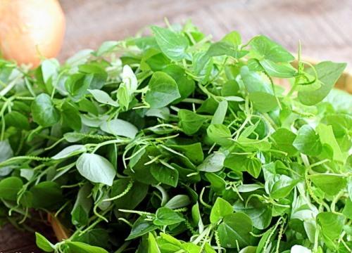 """Loại rau đắt hơn thịt, nhiều nước xem là """"thần dược"""", ở Việt Nam chỉ là cỏ dại"""
