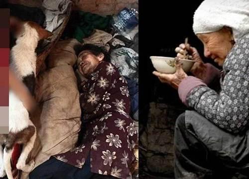 70 tuổi con cái bỏ đi hết chỉ còn chú chó già bầu bạn, bà cụ ăn rau cháo còn cho nó ăn...
