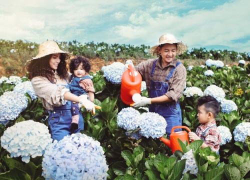 Gia đình Hải Băng - Thành Đạt dạo chơi trong vườn cẩm tú cầu Đà Lạt