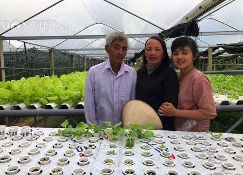 Hot girl xứ Quảng bỏ phố về quê trồng rau, thu 20 triệu/tháng