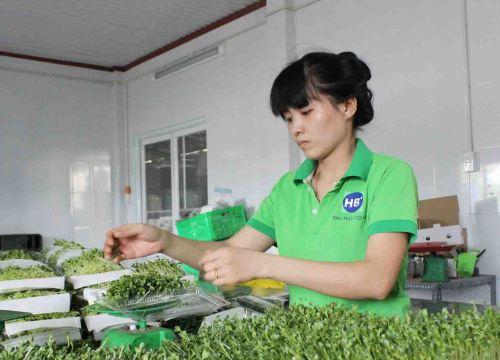 Tại sao để có thực phẩm sạch, người tiêu dùng phải trả giá đắt?