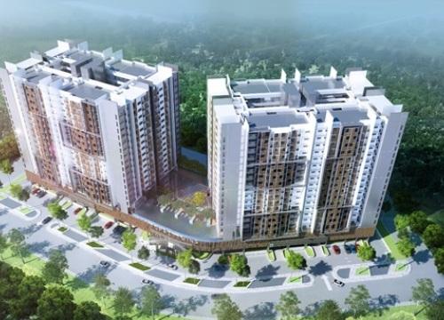 Thị trường BĐS Biên Hòa bước vào thời điểm chín muồi