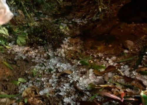 Sơn La: Xuất hiện mưa đá lớn kèm sấm sét, gió mạnh