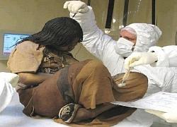 """Bí ẩn xác ướp 3 đứa trẻ được chôn từ 500 năm trước, đánh lừa cả các nhà khoa học vì """"trông chỉ như đang ngủ một giấc dài"""""""
