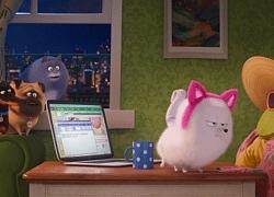Khoảnh khắc hài hước, dễ thương của biệt đội thú cưng trong 'Đẳng cấp thú cưng 2