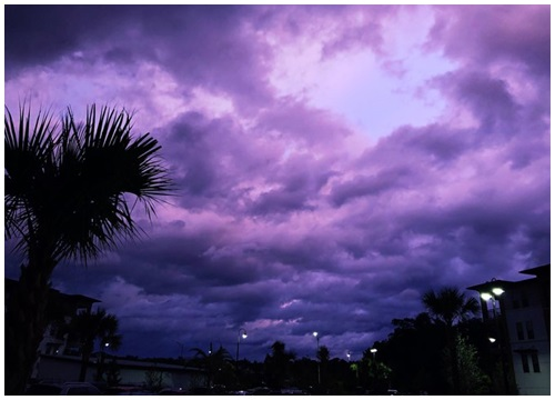 Lạ kỳ bầu trời Florida chuyển màu tím khi siêu bão quái vật Dorian quét qua  - Chuyện lạ - Việt Giải Trí