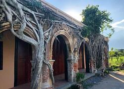 Những ngôi đền, chùa nằm dưới bộ rễ cây cổ thụ độc đáo trên thế giới